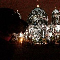 Festival of Lights #festivaloflights #berlinleuchtet #berlinerdom #filiusfidelius