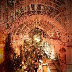 Stunning Indoor Gardens Worth a Visit in Vienna