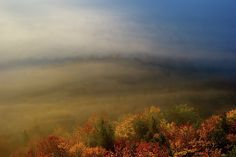 Autumn mood by Ren Kuljovska Fine Art Prints, Framed Prints, Canvas Prints, Pictures For Sale, Autumn Morning, Colorful Pictures, Wood Print, Art Images, Fine Art America