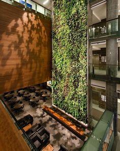 Verdejando  Jardim vertical belíssimo da Universidade de Ottawa | KWC Architecs  Diamond Schmitt Architects #verdejando #archdaily #pinterest #jardimvertical #arquitetura_sustentavel by arquitetura_sustentavel