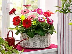 Brabourne Farm: Love .... Flowers + Baskets