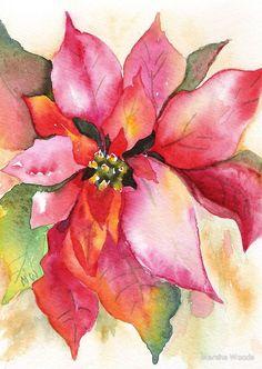 «Christmas Poinsettia Watercolor Marsha Woods» de Marsha Woods Más