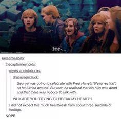 The feels! Harry potter meme