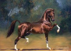 Dutch Harness Horse Saffraan Greeting Card for Sale by Jeanne Newton Schoborg Beautiful Horse Pictures, Most Beautiful Horses, Horse Artwork, Cool Artwork, American Saddlebred, Thing 1, Racing Stripes, Horse Girl, Animal Drawings
