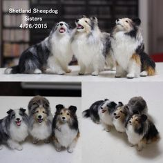 Super realistic needle felted Sheltie Sisters