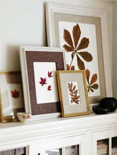DIY Holiday Card Display: A New Way To Showcase Seasonal Cards – Fall Decor Ideas - Hybrid Elektronike Martha Stewart Craft Furniture, Fall Crafts, Diy And Crafts, Karten Display, Framed Leaves, Pressed Leaves, Fall Inspiration, Kitchen Inspiration, Diy Holiday Cards