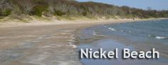 Nickel Beach Port Colborne- where sand dunes meet Carolinian Forest Beaches In Ontario, Niagara Region, Lake Erie, Niagara Falls, Childhood Memories, Nostalgia, Places To Visit, Banner, Canada