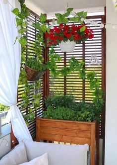 Balcony garden 597712181783847470 - Solution Ideas for Small Balcony: Wall Planter – Unique Balcony & Garden Decoration and Easy DIY Ideas Source by balconydiy Small Balcony Decor, Balcony Plants, Narrow Balcony, Small Balcony Garden, Balcony Gardening, Apartment Balcony Decorating, Apartment Balconies, Small Pergola, Pergola Patio