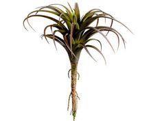 """Artificial Tillandsia Plant in Green Bugundy 7"""" Diameter x 8.5"""" Tall"""