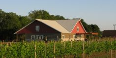 Riverbend Winery, Chippewa Falls, WI - We were there last weekend, it was beautiful!