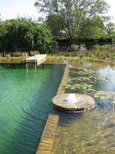 Tout savoir sur la piscine naturelle natural pool, really like the idea of a fountain to move the water around. Natural Swimming Ponds, Natural Pond, Natural Garden, Outdoor Pool, Outdoor Gardens, Pool Backyard, Pool Decks, Pool Landscaping, Swiming Pool