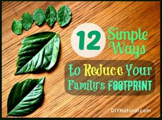 12 Simple Ways to Reduce Your Family's Footprint – Page 3 : Our ecological footprint is roughly defined as the impact our lives have on the environment, so let's explore ways to reduce the eco footprint of the family unit. Family Units, Holistic Nutrition, Green Life, Environmental Science, Sustainable Living, Sustainable Tourism, Ecology, Climate Change, In This World