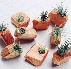 Práticas, as airplants são uma ótima pedida para trazer o verde para dentro de casa Sobras de madeira foram lixados e viraram vasos angulosos e sofisticados para airplants.