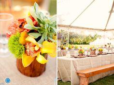Orchids, green trick, pincushion protea, succulents
