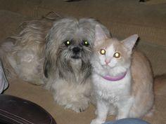 KEIKO AND baby BELLA