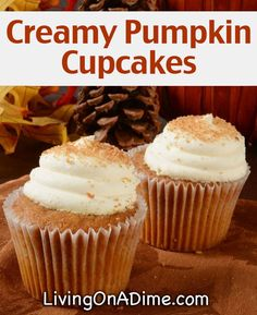 Creamy Pumpkin Cupcakes Recipe - 16 Of The BEST Pumpkins Recipes