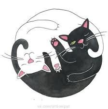 Cat Philosophy Art Print by Emily Andrus Lopuch
