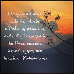 """""""The ignorant mind, with its infinite afflictions, passions, and evils, is rooted in the three poisons. Greed, anger, and delusion."""" ~Bodhidharma ..*"""