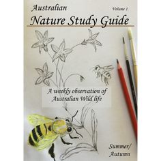 Nature Study Australia – Nature Science for Aussie Families  The Australian Nature Study Guide is a Charlotte Mason based program designed to encourage nature exploration through the Southern Hemisphere's seasons. Honeybees, blue-tongue lizards, bandicoots, gum moths and golden orb spiders are a few topics we'll explore in this Summer / Autumn volume.