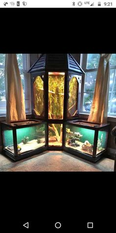 basteln Different way to do a corner reptiles basteln corner reptile room Turtle Habitat, Reptile Habitat, Reptile Room, Reptile Cage, Reptile Tanks, Les Reptiles, Cute Reptiles, Reptiles And Amphibians, Animal Room