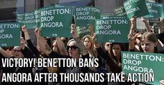 Victory! Benetton bans Angora after thousands take action.