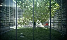 Library surrounding a glass atrium with a tree? Yes, please.