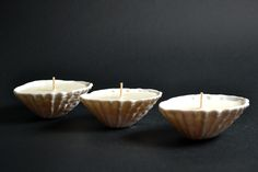 #lunadelmar #porcelain #candle #patella #lunaporcelain #sea #shells Sea Shells, Tea Lights, Porcelain, Del Mar, Porcelain Ceramics, Tea Light Candles, Seashells, Shells, Clay Pots