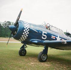 T6 Warbird vintage airplane.  Photo by Clark Brewer.