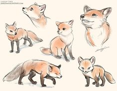 Foxes by LCibos on DeviantArt Animal Drawings Cute Animal Drawings, Animal Sketches, Kawaii Drawings, Art Drawings Sketches, Cute Fox Drawing, Fox Cartoon Drawing, Cartoon Eyes, Cute Animal Illustration, Drawing Animals