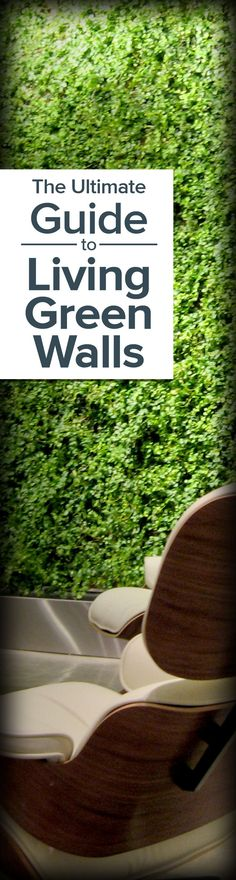 A complete guide to living green walls (vertical gardens) - http://www.ambius.com/blog/ultimate-guide-to-living-green-walls/