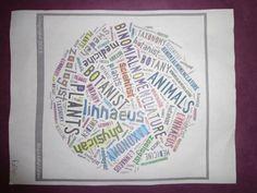 Using wordle in science class  #AdobeEduSweeps