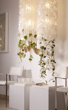 Hanging decoriaton with Anthurium. Perfect for hanging from the 'not-a-chuppah'