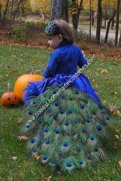 Homemade Pretty Peacock Halloween Costume Idea