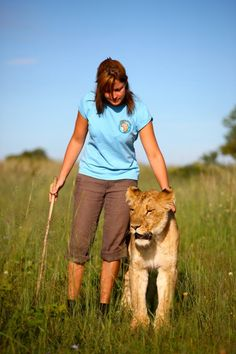 African Impact's very own pilot project, home to ground breaking African Lion Rehabilitation and Release into the Wild Programme, at Antelope Park is where it all began.