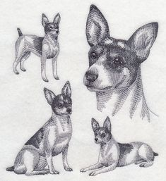 New - made to order. Custom embroidered Sweatshirt with Rat Terrier design. Select shirt size and shirt color. (Limited colors in size Can be Machine Embroidery Quilts, Machine Embroidery Designs, Wine And Paint Night, Embroidered Quilts, Rat Terriers, Mickey Mouse And Friends, Embroidered Sweatshirts, Dog Paintings, Sketch Design