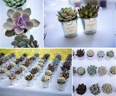 Succulents for miles. So cute Bartelt Ranch Weddings, Wedding Inspiration, Wedding Ideas, Used Wedding Dresses, Green Wedding, Fairy Tales, Cactus, Succulents, Heaven