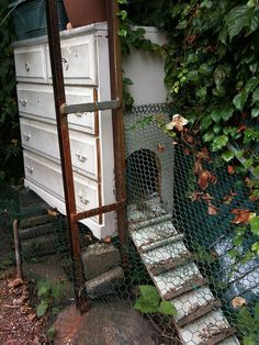 dresser chicken coop, so clever! would need to cut off portions of the bottoms of drawers inside/leave some for nesting space. open the drawers to look for eggs!