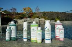 FGmarket.com | The Healthy Advantages of Probiotic Cleaners - Beasley's Floral. #natural #cleaning #probiotic