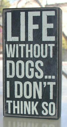 """Leave no doubt what dogs mean to you in life by displaying one of these wood dogs signs! Our """"Life Without Dogs.I Don't Think So"""" black dog signs are fabulous human dog gifts. Celebrate dogs in life. All Dogs, I Love Dogs, Puppy Love, Cute Dogs, Dogs And Puppies, Doggies, Havanese Puppies, Bichon Frise, Fu Dog"""