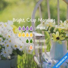 Bright, Crisp Morning - Essential Oil Diffuser Blend