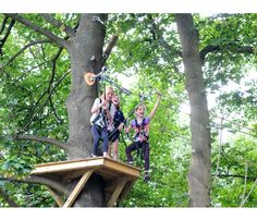 The UK's most exciting treetop adventure, high ropes and team building courses right here in Guildford, Surrey with all kinds of obstacles, Zip Wires and a freefall descender. Adventure, Gallery, Wood, Roof Rack, Woodwind Instrument, Timber Wood, Wood Planks, Trees, Adventure Nursery