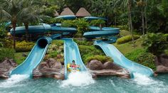 Toboagua Park, Summer Time, Water Playground, Farmhouse, Ideas, Log Projects, Pools, Houses, Future Tense