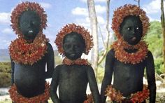 India's Supreme Court has moved to stop tourists taking 'human safaris' to watch the Andaman Islands' Jarawa tribe in their native forests.