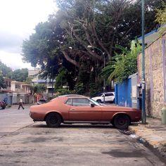 Brown Pony #mustang #mustangfanclub #morninautos #soloparking #chivera #ford #fordmustang #ponycar #rustlord #rust #abandoned #derelict (at Iglesia Santa Eduvigis)