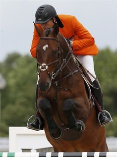 Netherlands' Marc Houtzager rides Tamino during the equestrian individual jumping first qualifier