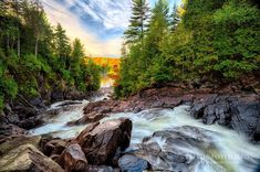 Get insider tips from travellers including, best of lists, hidden gems, local favourites and loads of ways to get the most out of your Ontario visit. Algonquin Park, Visit Canada, Great Lakes, Canada Travel, Capital City, Fall 2016, Waterfalls, Outdoor Activities, Travel Guides