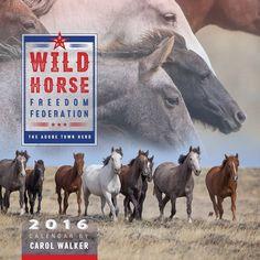 NEW Reduced Price! Wild Horse Freedom Federation 2016 Wild Horse Calendar  - 2016 - Adobe Town - Carol Walker - Wall Calendar - Wild Horse