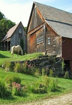 Ah, here is where old Freckles came, his old home & barn pasture....................