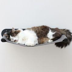 Swing Pet Regal - Dunkelgrau - alt_image_three