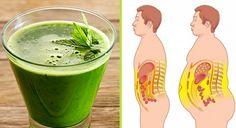 Suco Detox - Como Diminuir a Barriga em 3 Dias. Além disso, o suco detox é uma bebida que contém componentes que favorecem a perda da barriga em 3 dias.